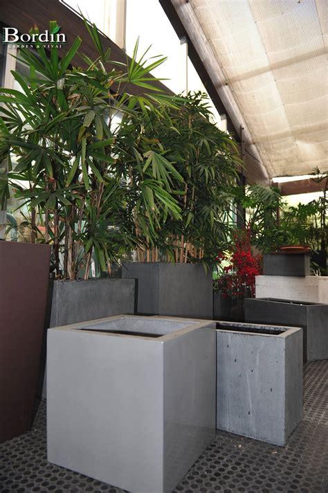 vasi da interno vasi da interno bordin garden vivai