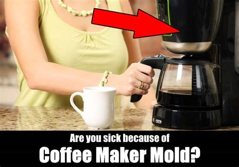 Coffee Maker Mold Is Making You Sick!   KitchenSanity