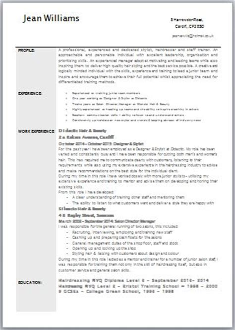 Professional Cv Template Uk Exle Cv School Leavers Uk Buy Original Essays