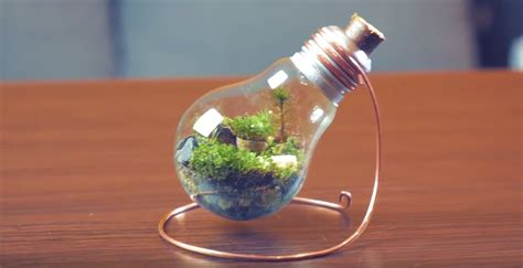 mini garden lights how to a miniature garden in a lightbulb eco snippets