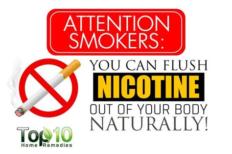 Detox Nicotine Out Of Your System by Attention Smokers You Can Flush Nicotine Out Of Your