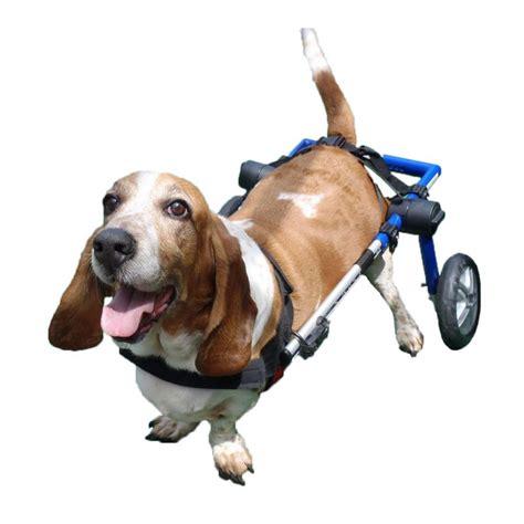 silla ruedas para perros silla de ruedas para perros