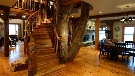 Open Concept Kitchen Designs nest a tree in the house the chronicle herald