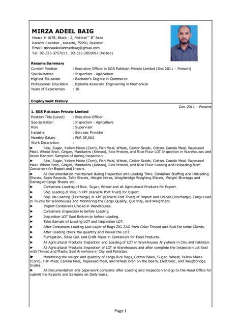 cv format karachi mirza adeel baig sgs cv pdf format pdf