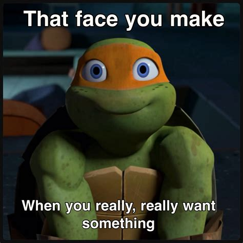 Teenage Mutant Ninja Turtles Meme - michelangelo tmnt memes pinterest michelangelo and tmnt