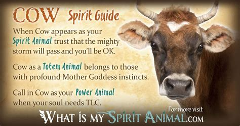 cowhide meaning cow symbolism meaning spirit totem power animal