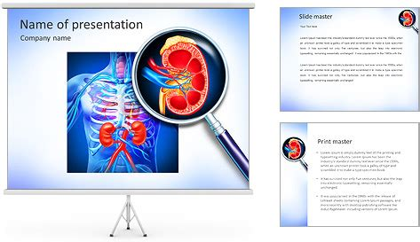 powerpoint templates kidney free kidney powerpoint template backgrounds id 0000007755