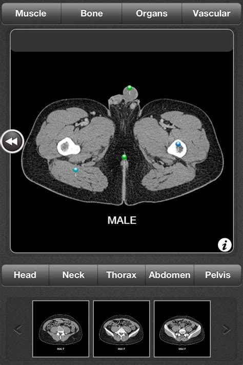 anatomy coloring book app ct anatomy app helps users learn general anatomy using