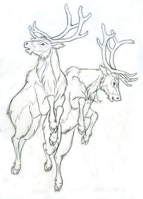 doodle draw reindeer more reindeer by lizzy23 on deviantart
