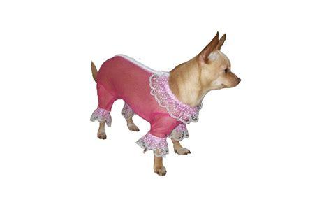 shedding suit no shedding suit 28 images tips bad breath shedding diy 1 bow collar breeds info
