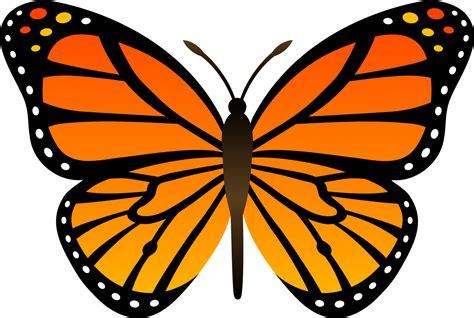 tattoo berwarna png camilla santos lindas borboletas