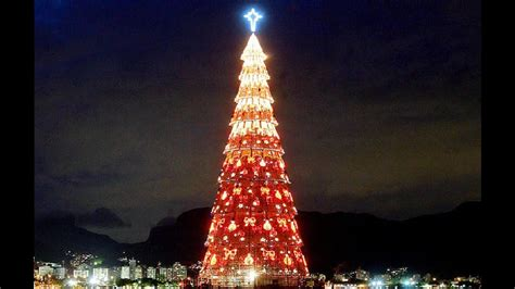 where is the biggest chistmas tree in the whole world top 10 tallest and trees in the world