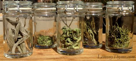 What Is The Shelf Of Dried Spices by Substituting Between Using Fresh Dried Herbs Or Their