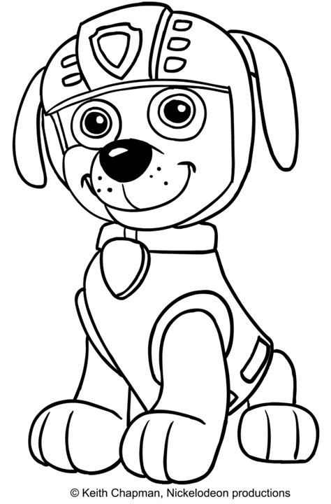 Coloring Pages Of Zuma From Paw Patrol | zuma from paw patrol coloring page coloring pages