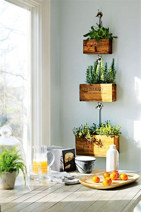 plants in the kitchen i love this indoor plant ideas the polished project