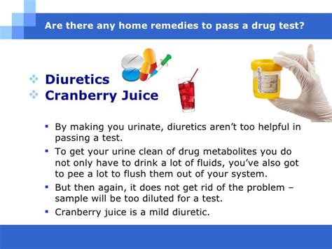 Home Remedies For Passing A Test In 24 Hours by Home Remedies To Pass A Test Naturally And Fast