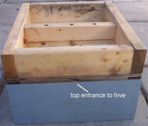 top bar hive entrance location beekeeping with the warr 233 hive feeders