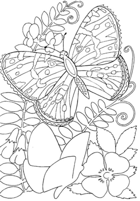 printable coloring pages flowers and butterflies butterfly among flowers coloring page supercoloring com