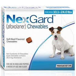 nexgard for dogs reviews nexgard for dogs buy nexgard for dogs at lowest price in us canadapetcare
