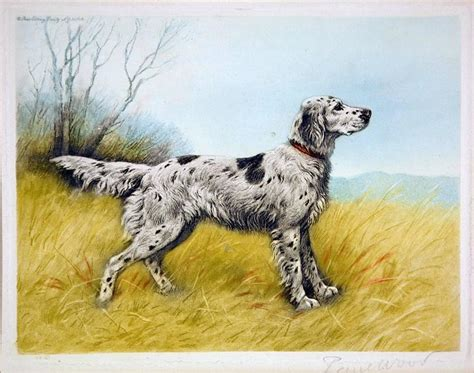 french setter dog breed paul wood french setter on point print for sale at 1stdibs