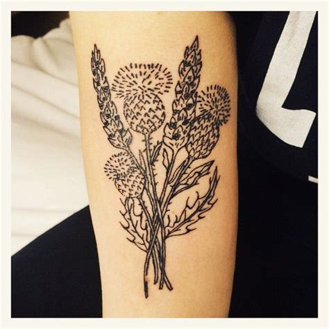 thistle tattoo pinterest lavender and thistles tattoo by daisydoestattoos