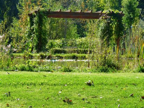 il giardino forte dei marmi giardino a forte dei marmi frullani luxury gardens