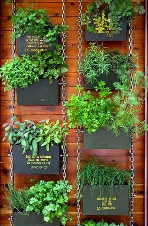 Hanging Garden Ideas Tips On Drying And Preserving Herbs Vertical Herb