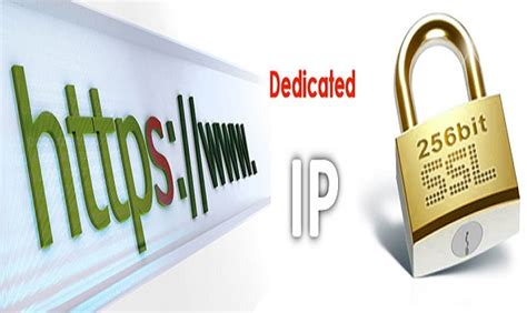 Ip Address Search Engine Go4hosting Updates On Web Hosting Industry