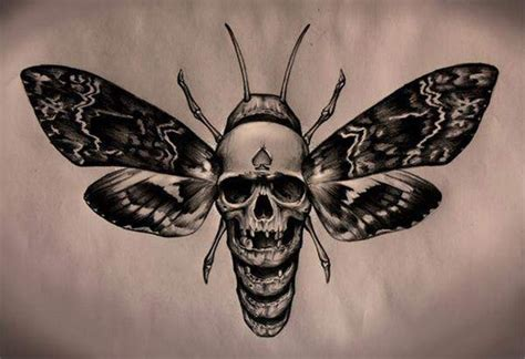 death head moth tattoo 30 skull moth tattoos