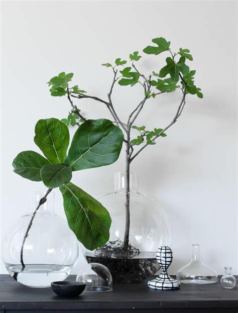 vases soliflores heimelig shop