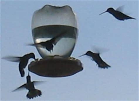 Bird Feeder Recipe Hummingbird Feeders Thriftyfun Homedesignpictures