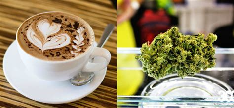 coffee and cannabis books bethlehem feleke 303 magazine