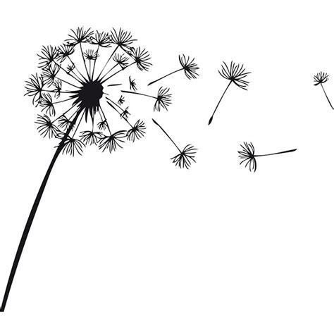 tatuaggio fiore soffione fiore di soffione con petali sparsi casasticker it