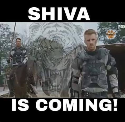 Shiva Meme - 10 images about the walking dead funny memes season 6 on