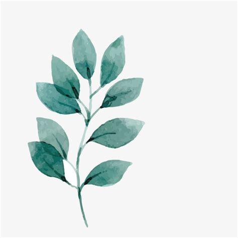 dibujos en hoja semilogaritmica vector watercolor ramas y hojas acuarela patron