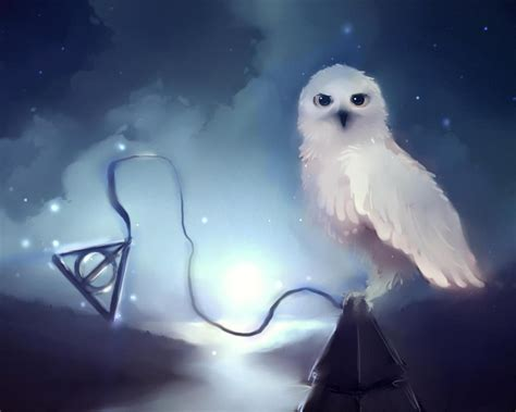 harry potter images hp hd wallpaper  background