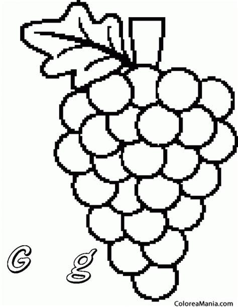 imagenes de uvas a color para imprimir colorear perlette uva de mesa apirena frutas dibujo