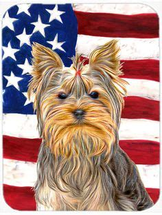 pad a yorkie how to draw a terrier from dover books via inkspired musings puppy