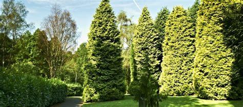 durham botanic garden botanic garden donations durham