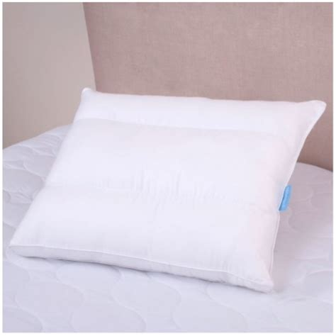 Sealy Pillows For Side Sleepers sealy posturepedic side sleeper pillow