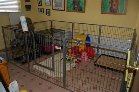 puppy play area awesome indoor puppy area kennel and yard ideas large tray