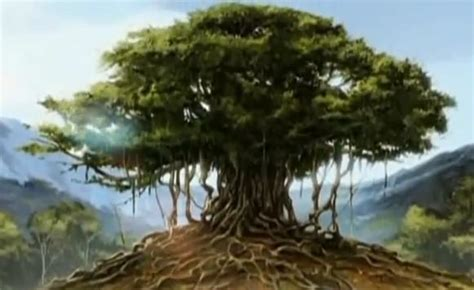 what is the history of trees trees in indian forests