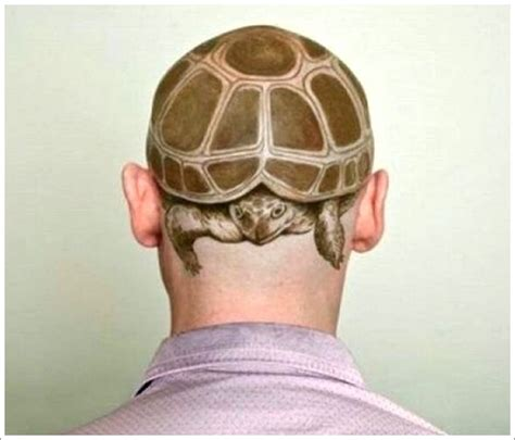 3d tattoo on head 17 unique turtle tattoo images and design ideas