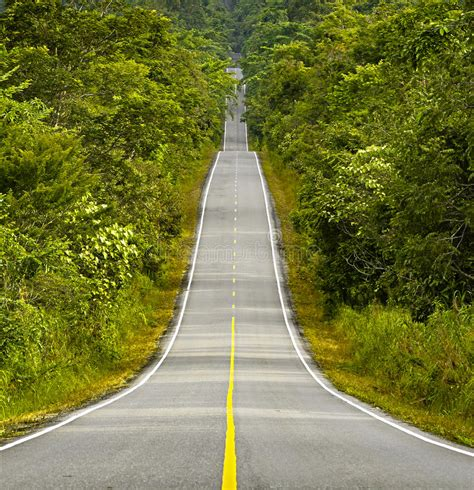 camino foto camino largo foto de archivo imagen de camino nowhere