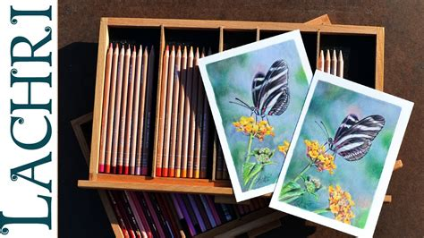 caran d ache luminance colored pencils prismacolor vs caran d ache luminance colored pencils w