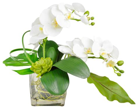 Orchid Vase Arrangement by Phalaenopsis Orchid Arrangement In Vase Artificial Flower Arrangements By