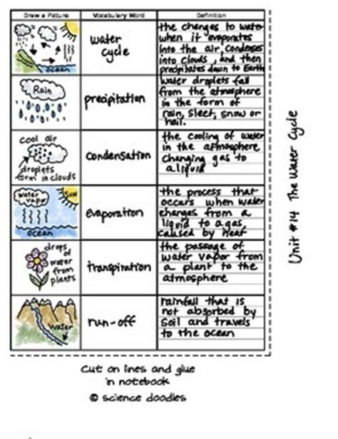 define doodle book free interactive notebook water cycle vocabulary set by