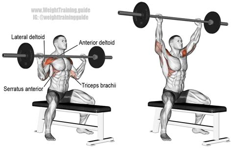 one arm barbell bench press seated barbell overhead press guide and video weight