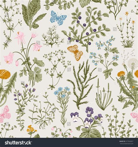 clipart vintage style floral pattern vector vintage seamless floral pattern herbs stock vector