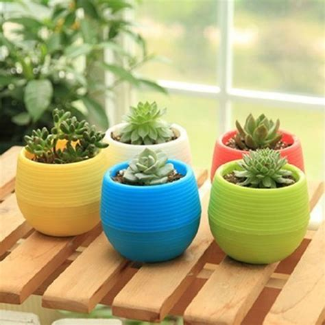 Harga Planter Bag 2018 mini pot bunga hias kaktus tanaman 5pcs multi color